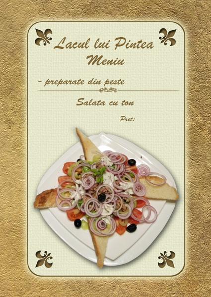salata-cu-ton-meniu
